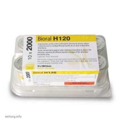 Вакцина Биораль Н-120 (Мериал Франция)