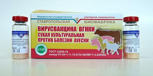 Вакцина Ауески