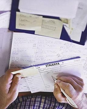 Stalkaya Proj Ex.jpg