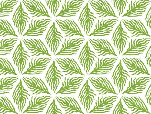 Pattern Palm