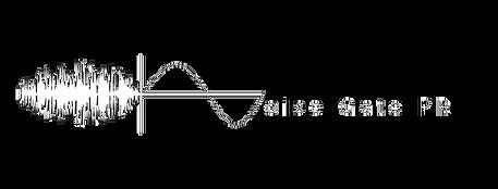 Noise Gate PR logo.png