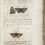 Thumbnail: Emperors, Admirals and Chimney Sweepers by Peter Marren