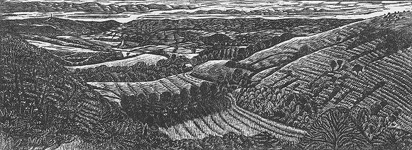 Blackmore Vale from Fontmell Down limited edition wood engraving