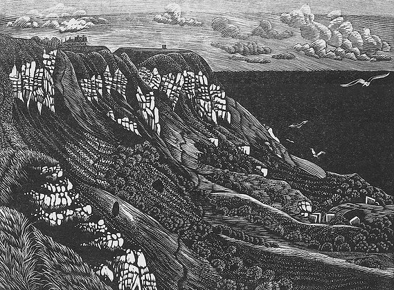 White Nothe limited edition wood engraving
