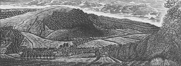 Hambledon Hill above Shroton limited edition wood engraving