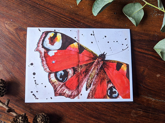 Insects - box of 6 greetings cards