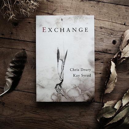 Exchange by Chris Drury & Kay Syrad