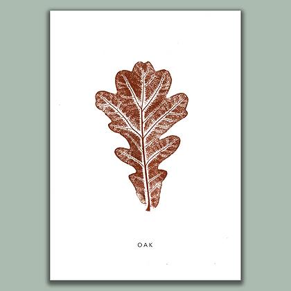 Oak A4 print