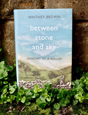 Between Stone and Sky: Memoirs of a Waller