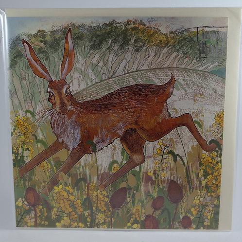 Teasel Hare