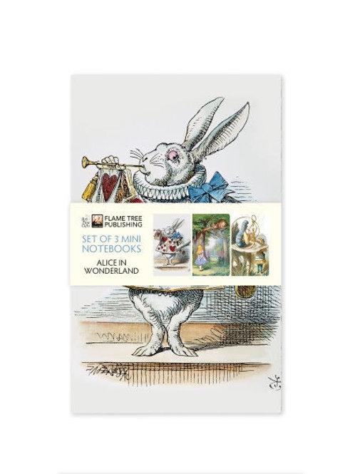 Alice in Wonderland Mini Notebook Set, Pocket Notebooks