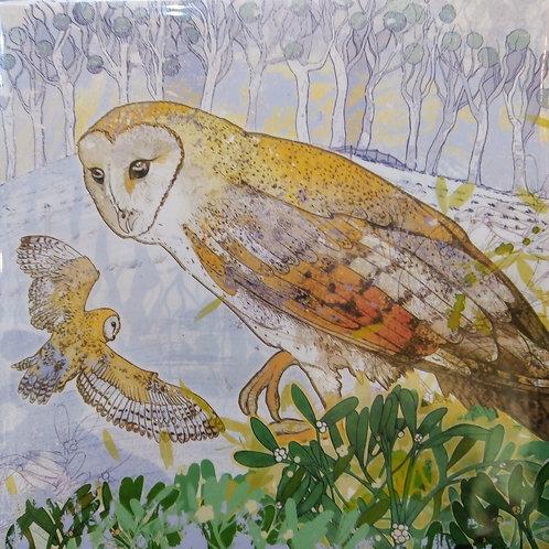 Christmas Owl and Mistletoe, Shelly Perkins, Christmas Card Pack by Emma Ball