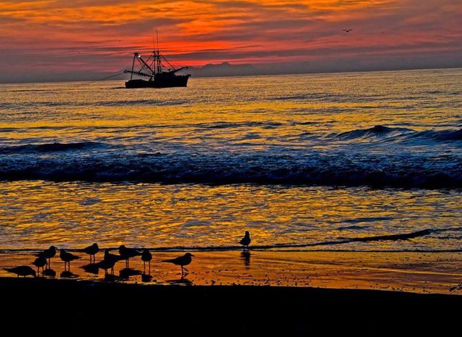 Shrimper Off Topsail Island