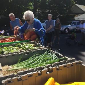 Friday Veggie Van Distribution to Resume July 10th