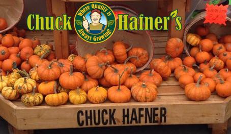 Columbus Weekend Pumpkin Sale - Chuck Hafner's