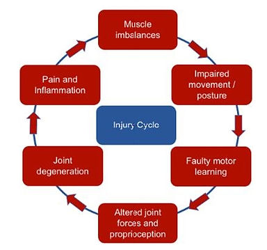Injury Cycle