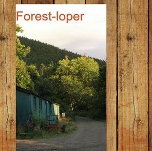 My Blog ! Forest Loper
