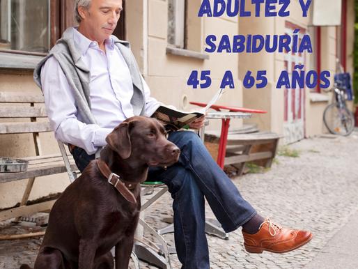 Adultez y Sabiduría 45 a 65 años