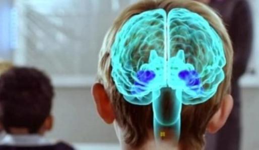 Conocer el cerebro para aprender mejor