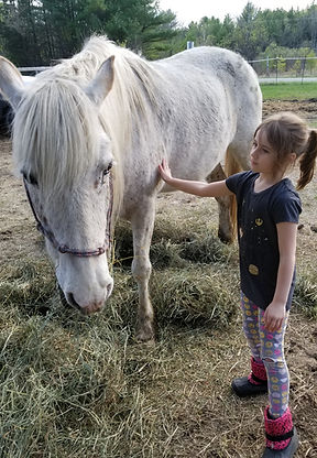 girl with therapy horse