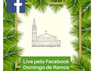 Domingo de Ramos deve ser Celebrado de modo especial em tempos de coronavírus.