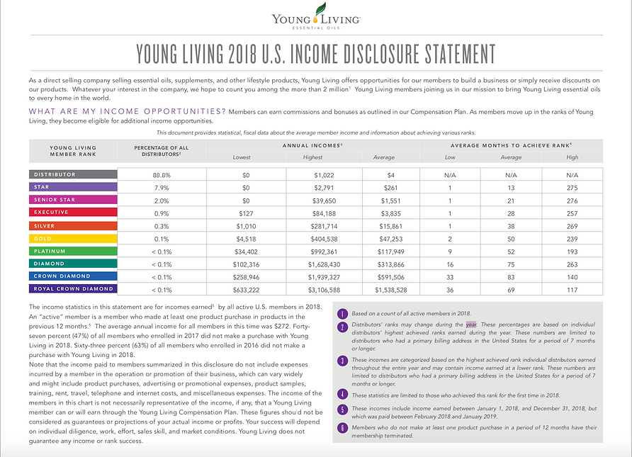 YL Income Discl 2018.png
