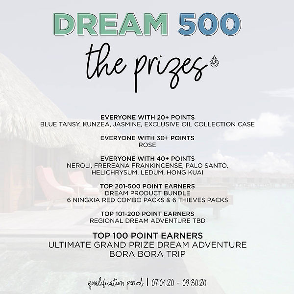 Dream 500 prizes.jpg