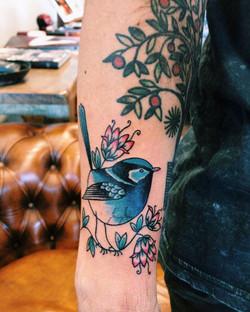 Blue Wren tattoo