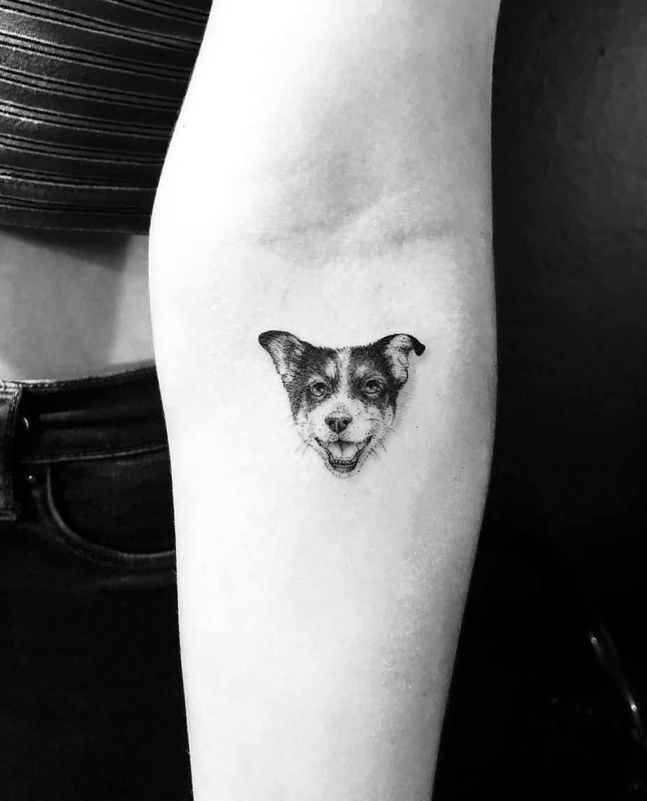 Mini Portrait Dog Face