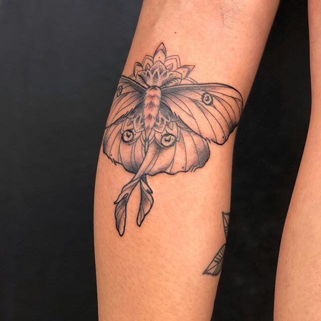 Fine Line  dot work butter fly Tattooist Jasmine Gold Coast Tattooist Absolute Tattoo