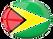 GISCAD Guyana Inc.png