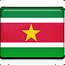 Suriname-Flag-icon.png