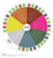 strain wheel.jpg