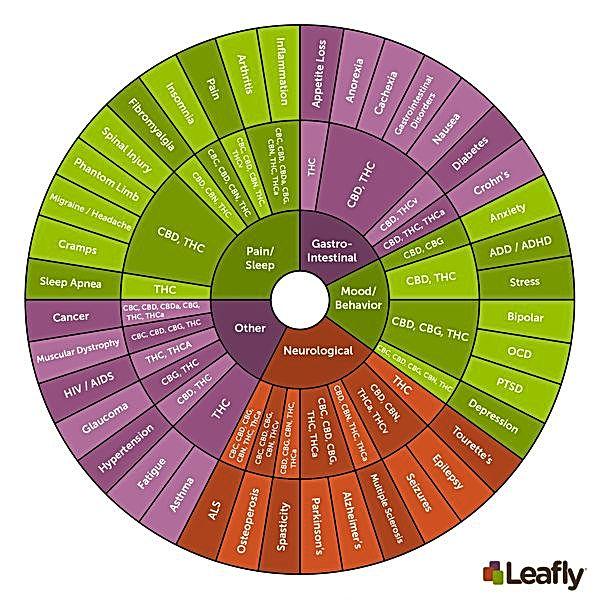 cannabinoid info wheel.jpg