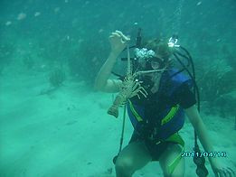 Lobster Diving Caribbean
