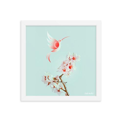 Pésk'a Sakura (12x12 Framed)