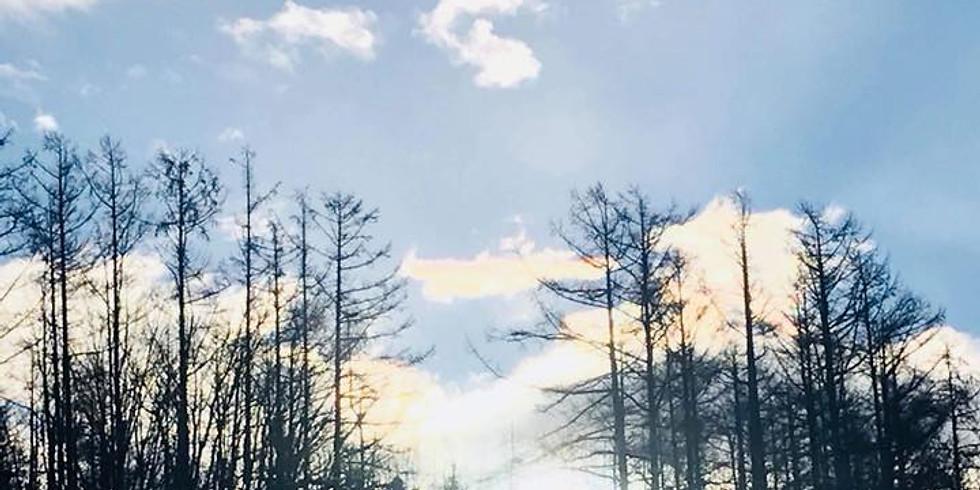 """2019/2/15-17 @北海道 """"目覚めの森"""" ライフ編"""