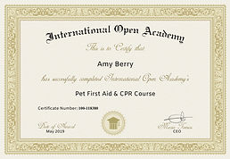 IOA-Certificate_265790_1136.jpg