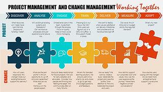 Project vs Change.jpg