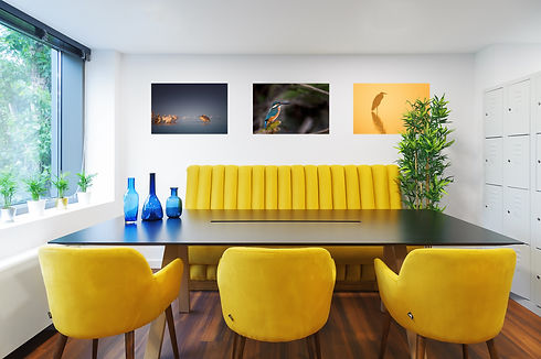 Office Space Interior Design Photography