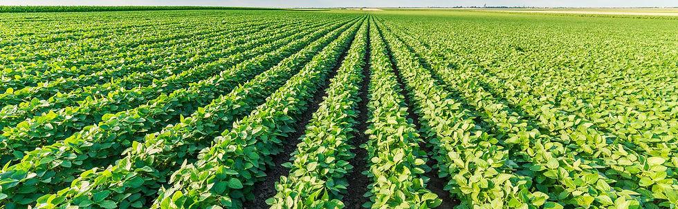 FarmBill1600x600_3333.jpg