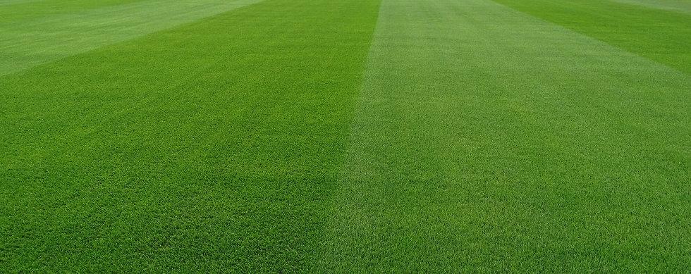 St-Geroges-Park-National-Football-Centre