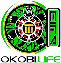 okobilife black turtle logo.png