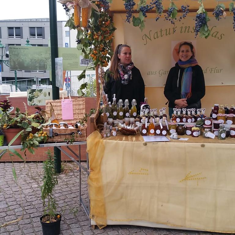 Pop-Up Verkauf Rathauspassage Eberswalde