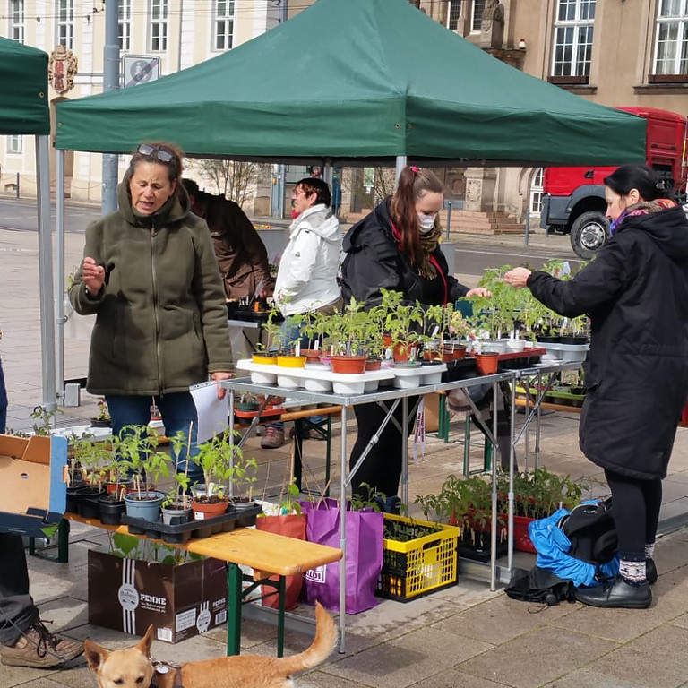 Markttag Eberswalde 14.05.2021