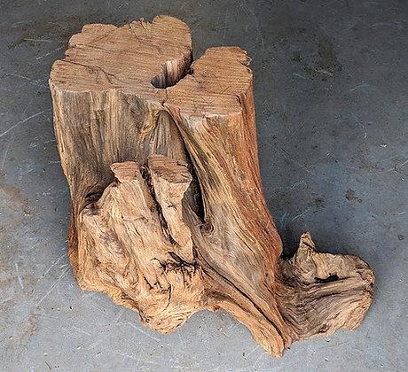 Medium Redwood Stump #19