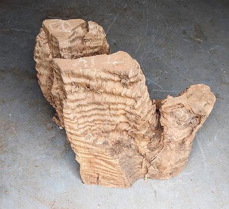 Super curly redwood stump #12