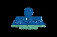 Logo-einstein-borda.png