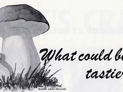 What could be tastier? -- 4 Soviet mushroom recipes from 1966