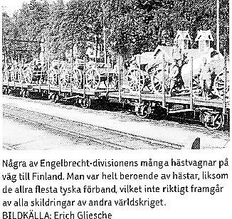 Engelbrechtdivisionen / 163-infanteridivisionen.